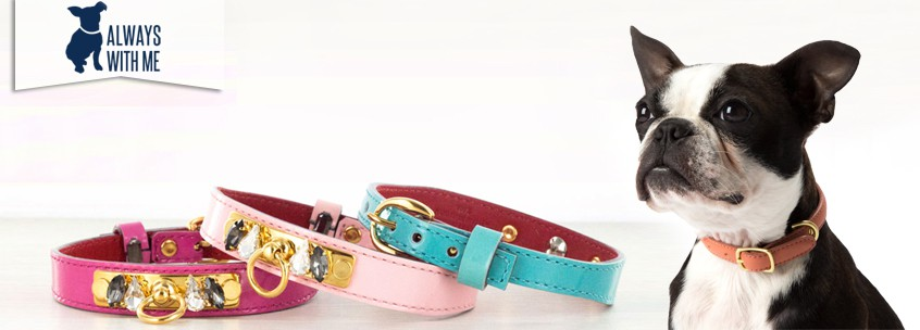 ALWAYS WITH ME Pets Accessories